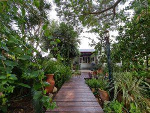 למכירה נחלה בהזדמנות חד-פעמית, 30 דונם - כולל 2 בתים - בעין איילה - גב השקעות (3)