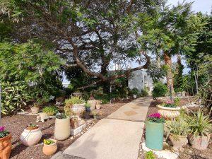 למכירה נחלה בהזדמנות חד-פעמית, 30 דונם - כולל 2 בתים - בעין איילה - גב השקעות (4)